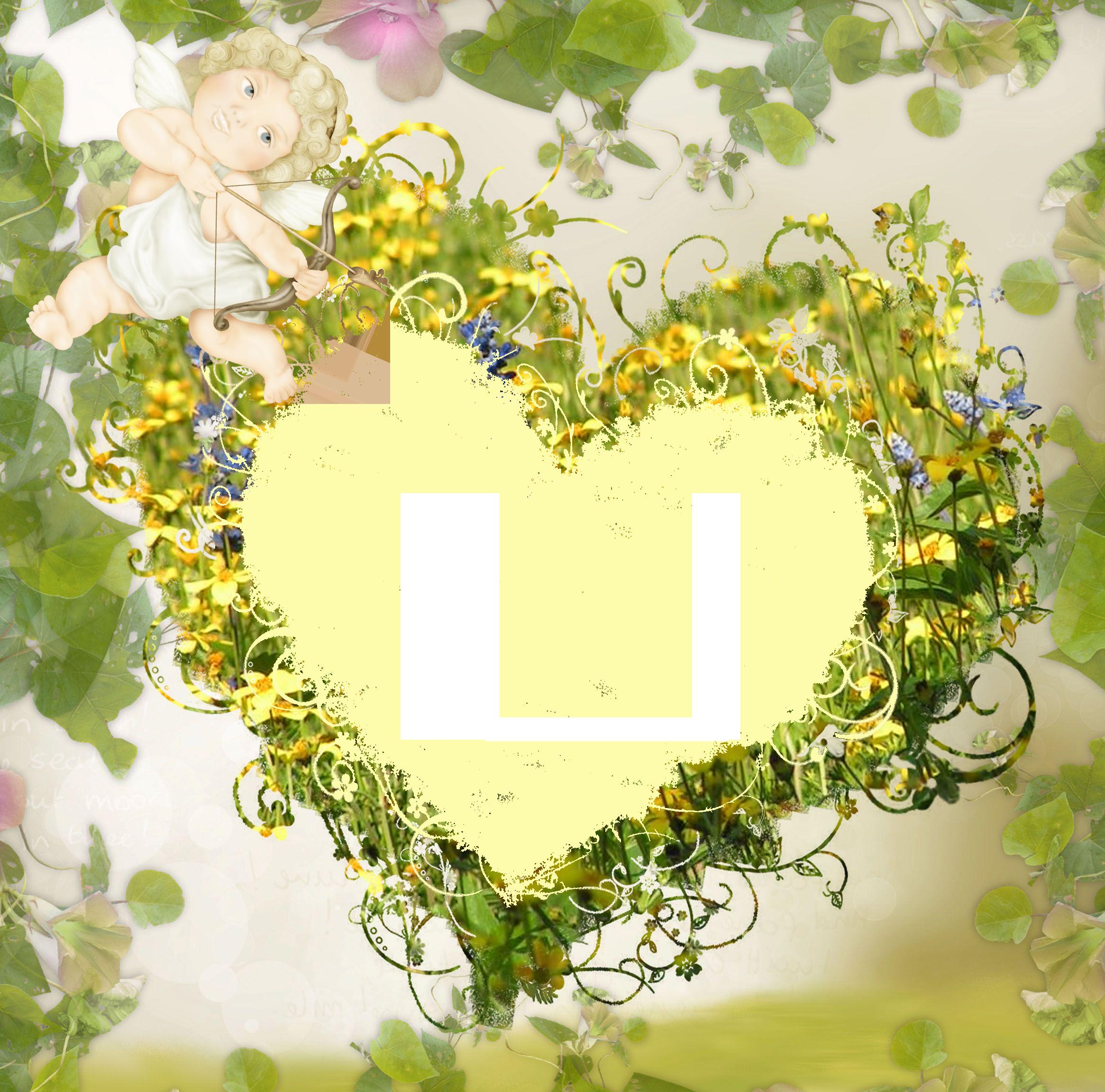 Сигурни уивер фото сердцеедки анимированные картинки