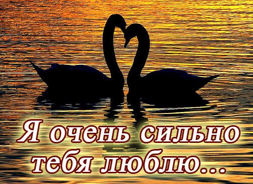 открытка для признания в любви