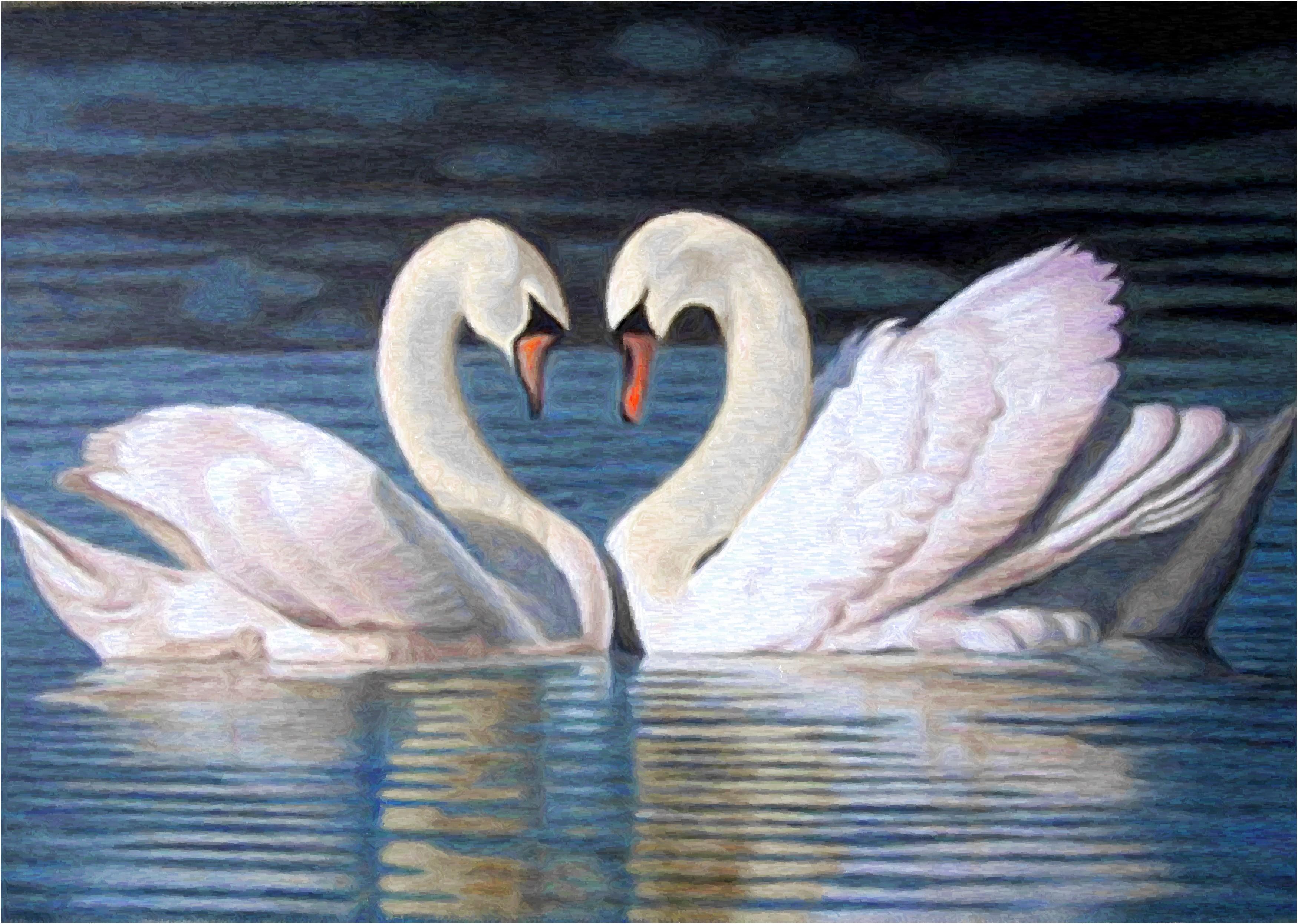 Картинки с парами любовные